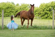 little girl, horse photography, tutu, Lisa Karr Photography, Beloit Wisconsin, Find on Facebook