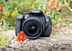 The British Red Cross and Canon have teamed up for a new photography competition to celebrate the 10th anniversary of their Humanitarian Citizenship Awards.   Young photographers in to UK could win a Canon 700D kit worth £800 by submitting photos under the theme 'What makes a hero?'