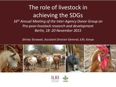 Presented by Shirley Tarawali, Assistant Director General, ILRI, at the 16th Annual General Meeting of the Inter-Agency Donor Group on Pro-poor-livestock resea…