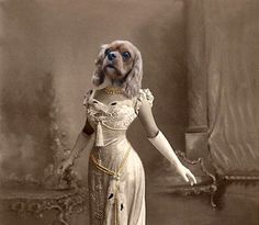 Ava Vintage Dog 5x7 Print Anthropomorphic by AnimalFancy, $15.00