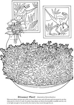 DuneCraft Weird and Wacky Plantlife By: DuneCraft, Ruth Soffer  COLORING PAGE 4 Dover Publications