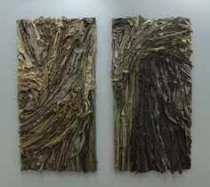 Title: Reforested