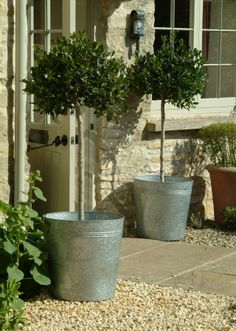 Really love these simple galvanized planters.