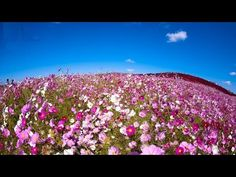 Abraham Hicks - Where you are has to be all right - YouTube