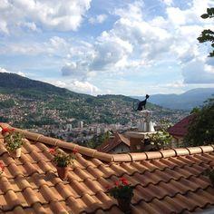 ~red roofs of sarajevo~ #sarajevo #bosnia #bosna #sky #city #love #hills #blackcat #kibe #iphone