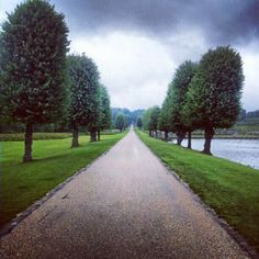 damarcand The garden path #path #avenue #trees #green #garden #castle #frederiksborg #denmark #summer #instagood #iphonesia #love #photooftheday #instamood #igers #iphoneonly #instagramhub #jj #picoftheday #instadaily #bestoftheday #igdaily #beautiful #nature #instagramers #follow