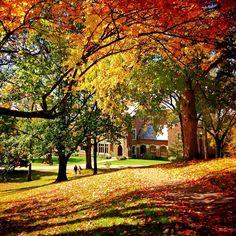 Autumn on the Wittenberg University Campus, Springfield, Ohio. Photo by wittenberguniversity