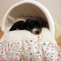diy anleitung bett f r hunde und katzen n hen via hund und katze diy anleitungen. Black Bedroom Furniture Sets. Home Design Ideas