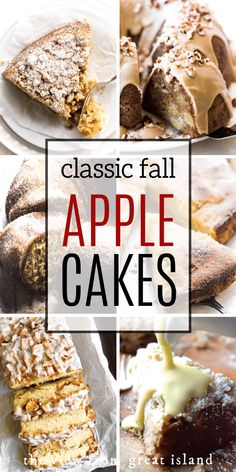Our Favorite Apple Cakes from bundts and coffee cakes, to fritter bread, I hope one of these apple cake recipes becomes new fall tradition in your life! Apple Cakes, Apple Cake Recipes, Apple Desserts, Best Dessert Recipes, Fall Desserts, Fall Recipes, Delicious Desserts, Baking Desserts, Fruit Recipes