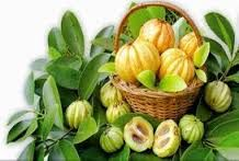 Natural Garcinia Cambogia Extract - Works For Weight Loss!