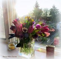 Bouquet 04/03/2013: Anemones, our tulips and muscari sit on the windowsill while the sun sets low in the sky. - Bare Mtn Farm