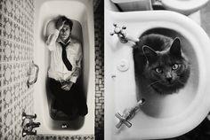 """? =^..^= ?  Série """"Des hommes versus des chatons"""",  """"Hot guys versus kittens"""". Baignoire."""