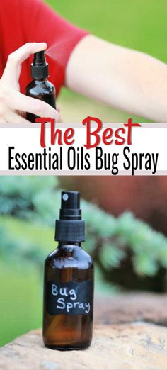 Make this easy DIY Essential Oil Bug Spray to keep bugs away naturally. No worries about harsh chemicals when you make this essential oil bug repellent. #onecrazymom #bugspray #diybugspray #essentialoils #essentialoilbugspray #homemadebugspray #bugrepellent #diybugrepellent #toxinfree #toxinfreeliving