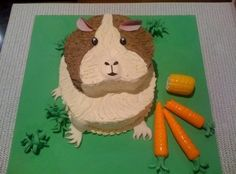 Amazing guinea pig cake!! I need one!!