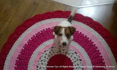 crocheted rug, and my cute assistant, she is jack russel terrier- Martta ♥
