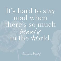 American Beauty - The Most Beautiful Quotes From Movies - Photos
