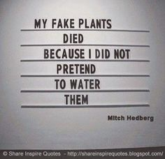 My fake plants died because I did not pretend to water them. ~Mitch Hedberg  #FamousPeople #famousquotes #famouspeoplequotes #famousquotesandsayings #famouspeoplequotesandsayings #quotesbyfamouspeople #quotesbymitchhedberg #mitchhedberg #mitchhedbergquotes #fake #plants #died #pretend #water #shareinspirequotes #share #inspire #quotes