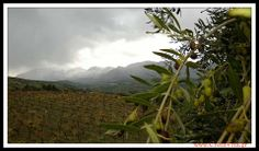 #Crete Snow flakes, snow flakes  Falling from the sky