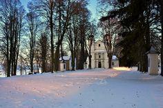 #Slanicaislandofart #Slovakia #Nature #Island #Winter #OravaDamm