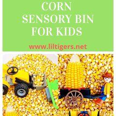 Fall Sensory Bin, Sensory Bins, Sensory Play, Free Activities For Kids, Animal Activities, Motor Activities, Farmer Craft, Flint Corn, Baby Food Containers