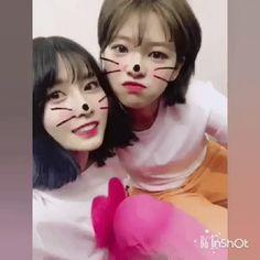 Momo&Jeongyeon