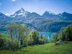 #Seerenbachfälle am #Walensee #Weesen #Amden #Wanderung Switzerland, Hiking, Mountains, Nature, Travel, Europe, Places, Tourism, Road Trip Destinations