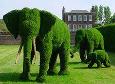 peng peng's place: green elephants