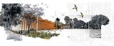 HASSELL   Projects - Perry Park Design Competition