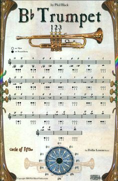 Brass Instruments - Diagrams and Fingering Charts for Trumpet, Trombone… Trombone, Bass Clarinet, Trumpet Fingering Chart, Trumpet Sheet Music, Brass Instrument, Trumpet Instrument, Brass Music, Band Website, Band Nerd