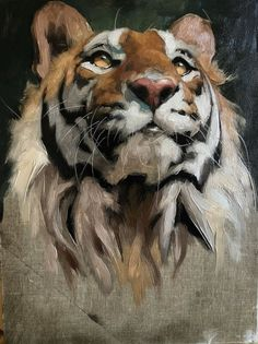 Winter-Spring – The Florence Academy of Art Animal Paintings, Animal Drawings, Art Drawings, Portrait Art, Pet Portraits, Art And Illustration, Florence Academy Of Art, Big Cats Art, Tiger Art