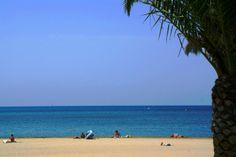 Plage du Grau du Roi Port Camargue, France, Beach, Water, Outdoor, Outdoor Gardens, Tourism, Landscapes, Gripe Water