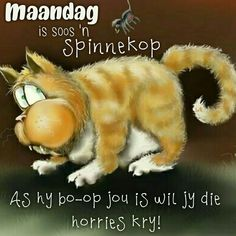 Lekker Dag, Afrikaans Quotes, Special Quotes, Good Morning Wishes, Cute Quotes, Happy Monday, Qoutes, Corgi, Humor