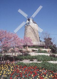 Historical Dutch Mill ~ Wamego, Kansas