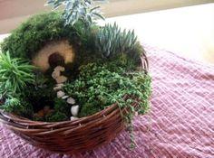 http://www.justapinch.com/recipes/non-editible/other-non-edible/easter-garden.html