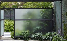 glass wall for privacy
