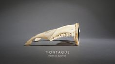 So wild...sunglasses made from deer jawbone and blonde horn. CHIEF & HIS WIDOW BY EMMA MONTAGUE