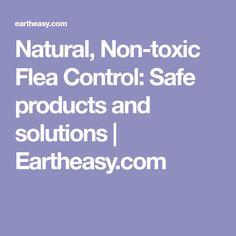 Natural, Non-toxic Flea Control: Safe products and solutions | Eartheasy.com