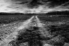 Tracks on the moon... by Jem Salmon, via Flickr