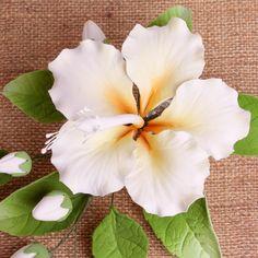 Single Open Hibiscus Spray - Peach