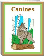 Thematic Unit - Canines - The Canine Unit is a fascinating study of the history of canines. It shares with children the groups of animals in this family. It gives much information about the various kinds of canine, eating habits, habitats, bodies, and their importance in our society. The unit also includes various worksheets such as: spelling, word find, criss cross, unscramble the words, and more.