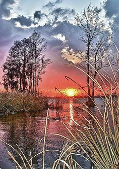 Pawley's Island, South Carolina