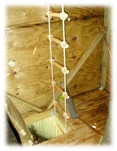 Rope Ladder | Keeping one rolled up in each room on the 2nd story (or higher) in case of fire would not be a bad idea.