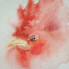 """5""""x7"""" rooster head inspired by South Carolina Gamecocks. Water color painted  by Maridel Shaw  April 2, 2012"""