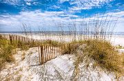 Tropical Sunrises And Sunsets - The Dunes by Debra and Dave Vanderlaan