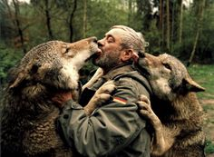 The Wolf Man: The Tale of a Wolf Among Wolves! Beautiful Creatures, Animals Beautiful, Wolf People, Animals And Pets, Cute Animals, Beast Creature, Wolf Love, Beautiful Wolves, Wild Dogs