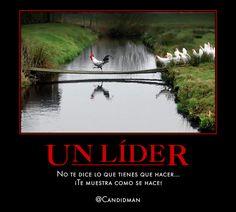 Un #Lider no te dice lo que tienes que hacer...  ¡Te muestra como se hace! @candidman #Frases #Liderazgo