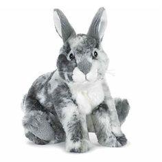 #Webkinz Signature English Spot Bunny