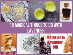 15 Magical Things To Do With Lavender. I love lavender! Herbal Remedies, Home Remedies, Natural Remedies, Face Scrub Homemade, Homemade Beauty, Homemade Gifts, Health And Wellbeing, Health Benefits, Beauty Recipe
