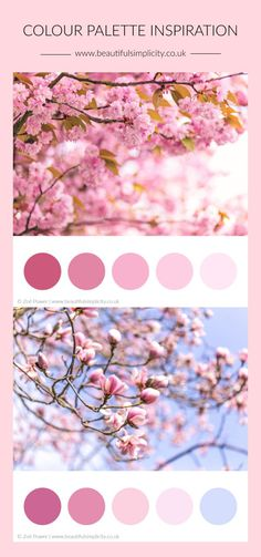 Colour palette inspiration from nature Aqua Color Palette, Color Schemes Colour Palettes, Instagram Theme Ideas Color Schemes, Cherry Blossom Painting, Japanese Colors, Cherry Blossom Wedding, Spring Wedding Colors, Theme Color, Spring Blossom