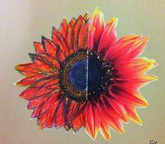 Solsikke fra halv foto til hel blomst - lavet af 4. og 5. �rgang
